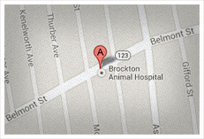 brockton map